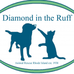 Diamond in the Ruff 2019